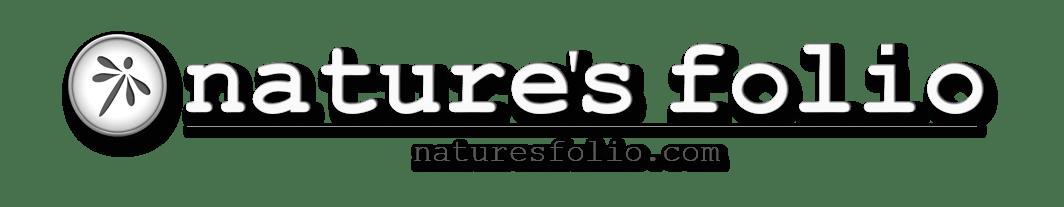 NaturesFolio.com Logo